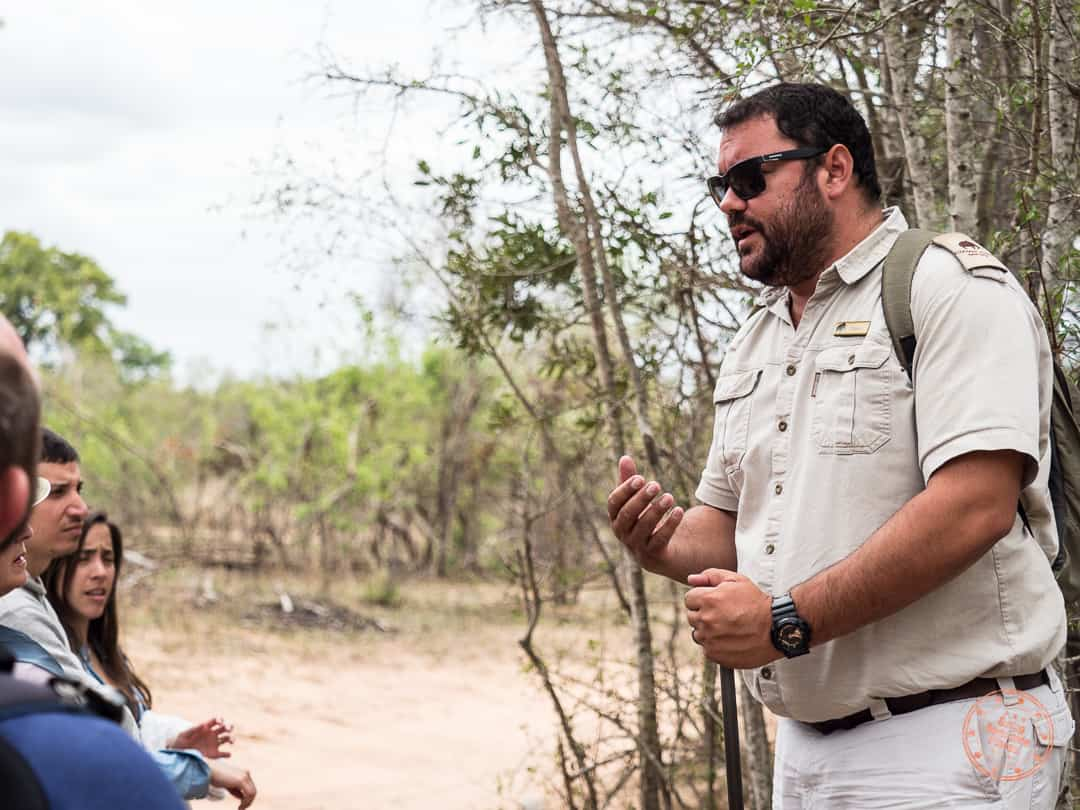 morne sharing knowledge with us during bushwalk