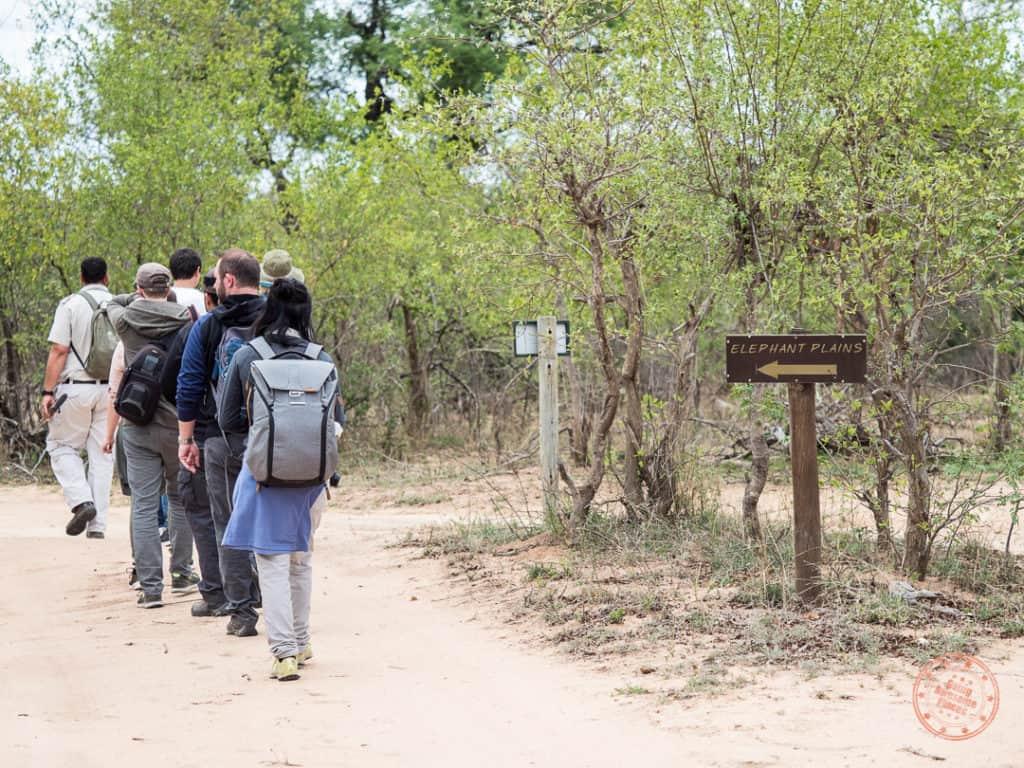 leaving the elephant plains grounds for a bushwalk
