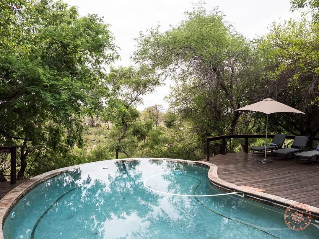 main pool at elephant plains