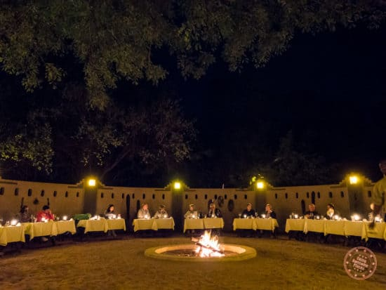 outdoor dining experience at Elephant Plains