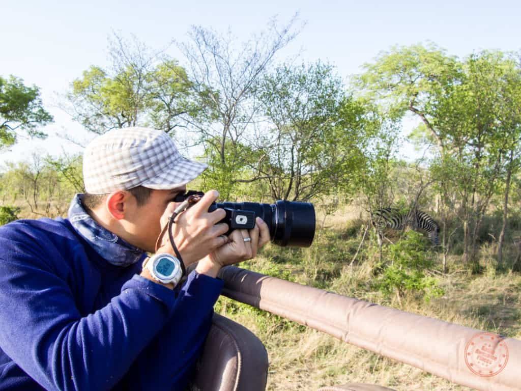 will photography from a safari truck with elephant plains