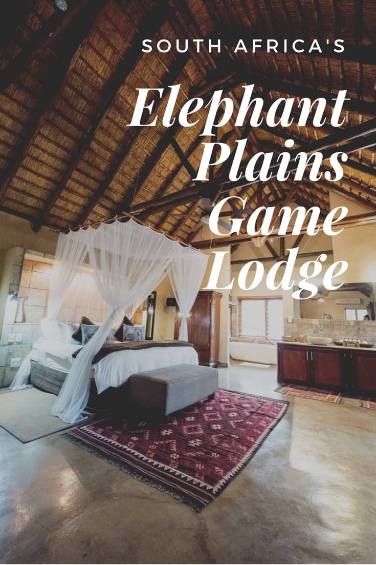 REVIEW - Elephant Plains Game Lodge Safari Experience, Sabi Sand Private Reserve