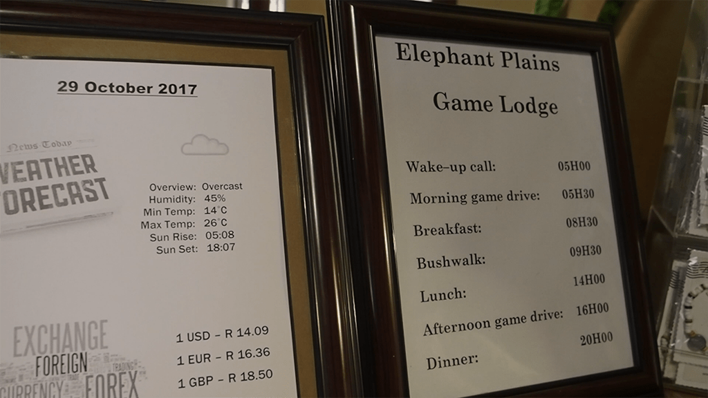 elephant plains daily schedule