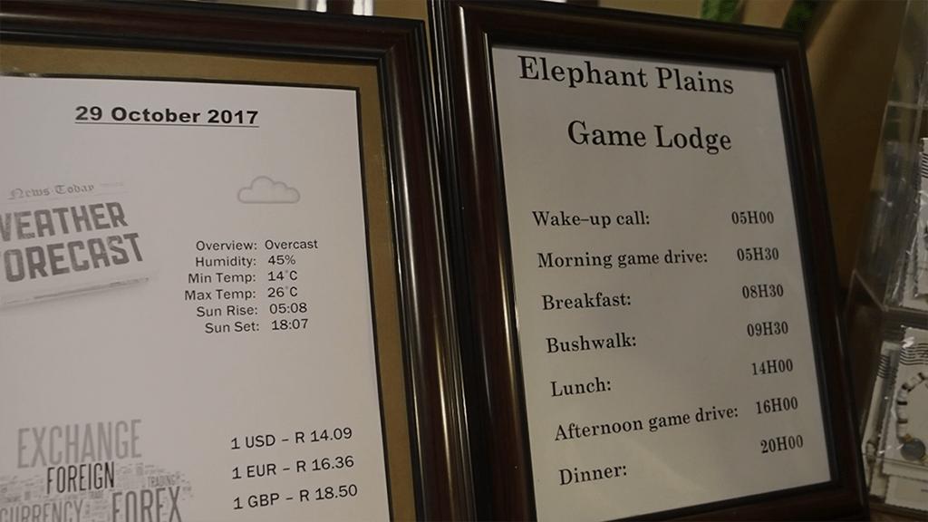 elephant plains daily schedule