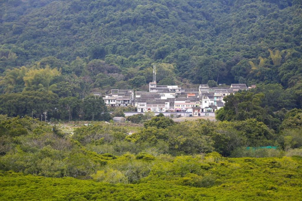 old hakka villages along lai chi wo guided hiking tour