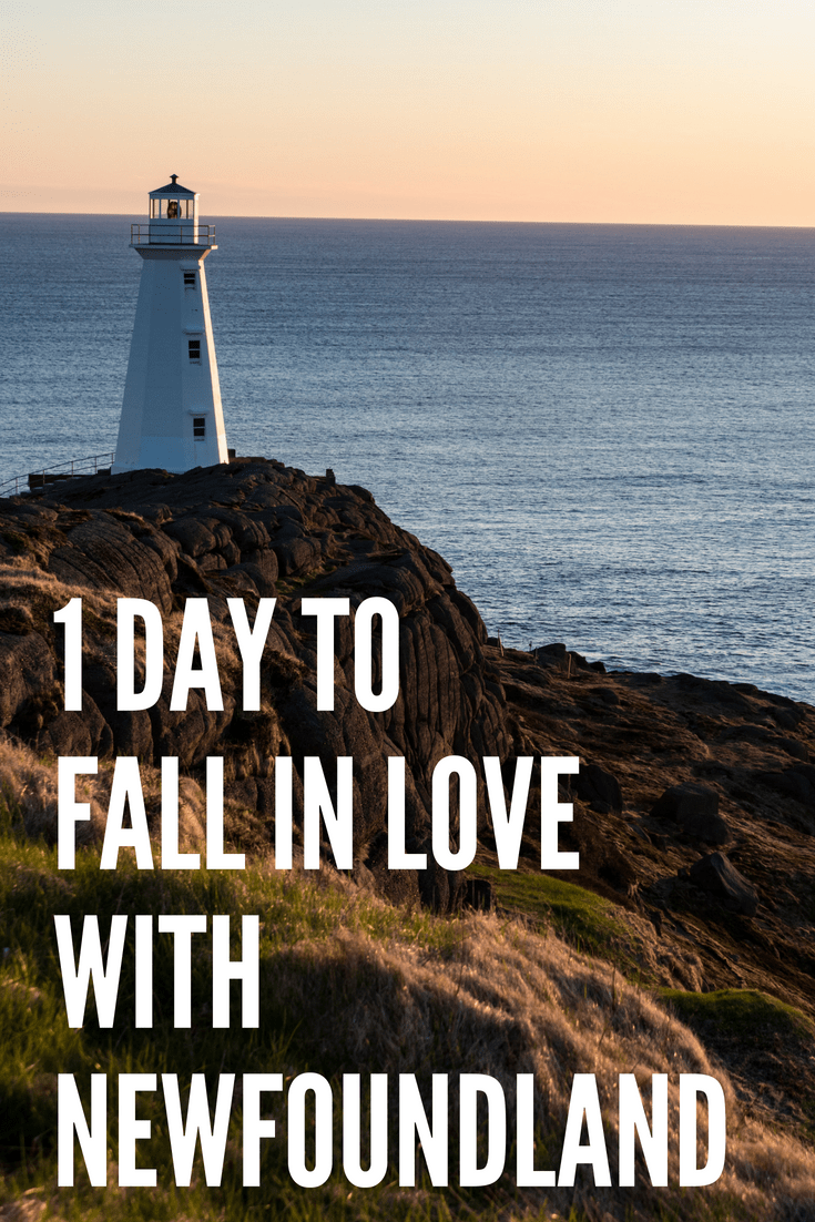 1 Day St. John\'s Itinerary in Newfoundland