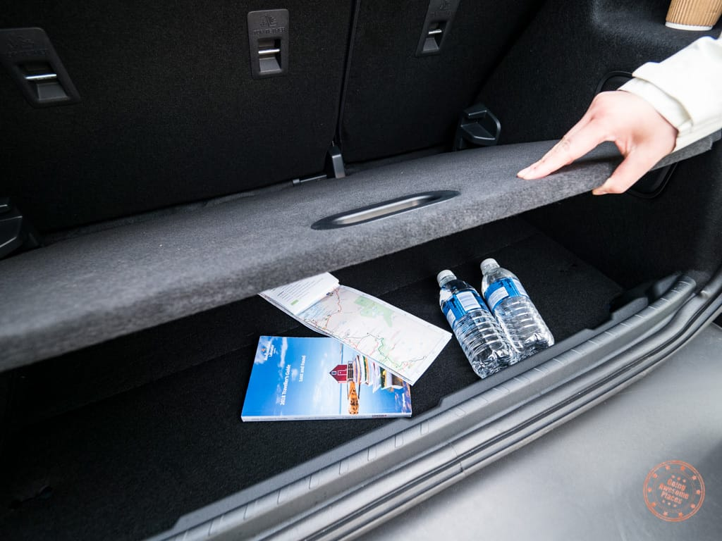 nifty storage shelf in the trunk of the ford ecosport