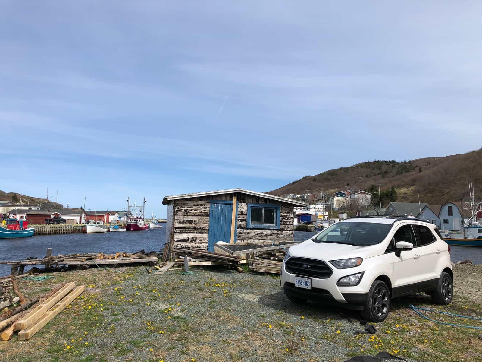 diamond white ford ecosport at petty harbour