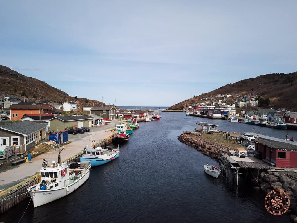 petty harbour newfoundland from above