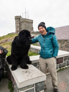 will with newfoundland dog on signal hill