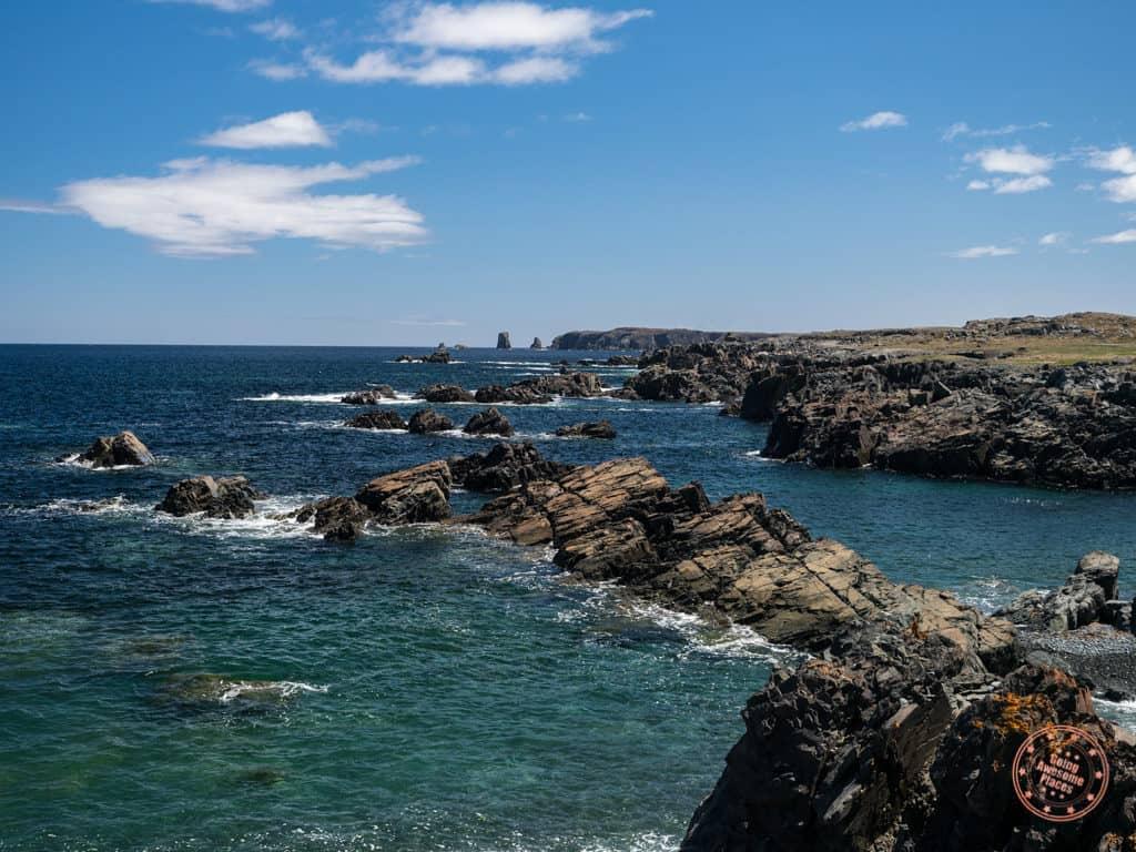 landscape from cape bonavista