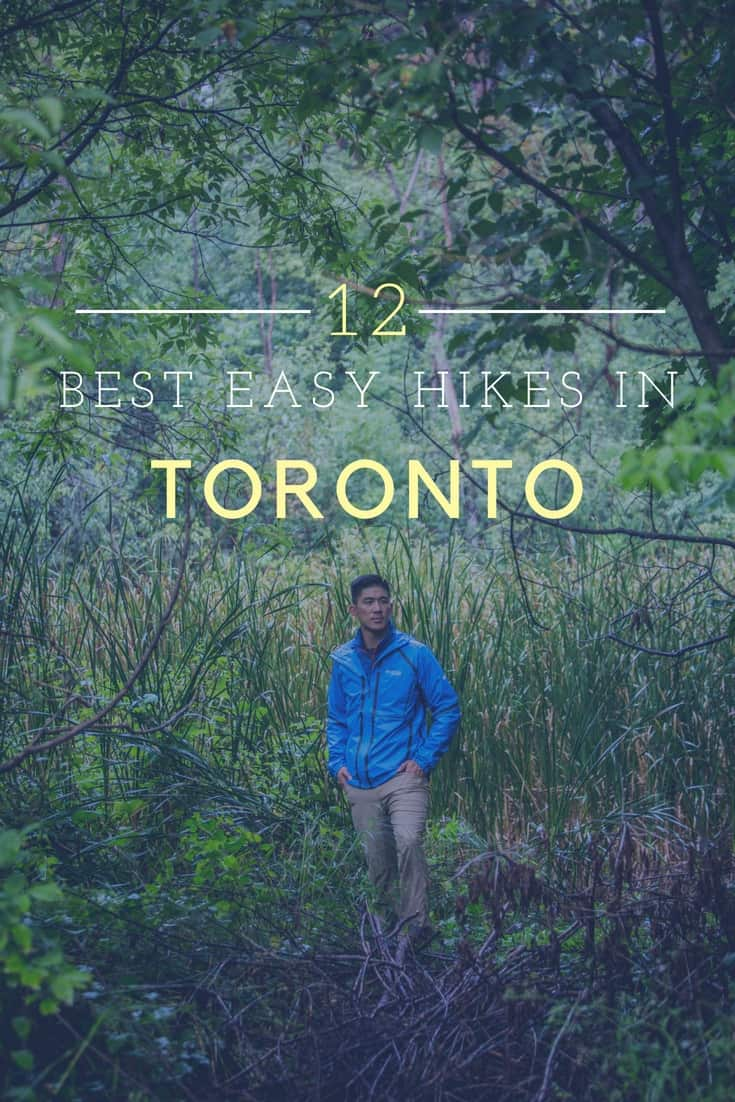 12 of the Best and Easy Hiking Trails in the Greater Toronto Area