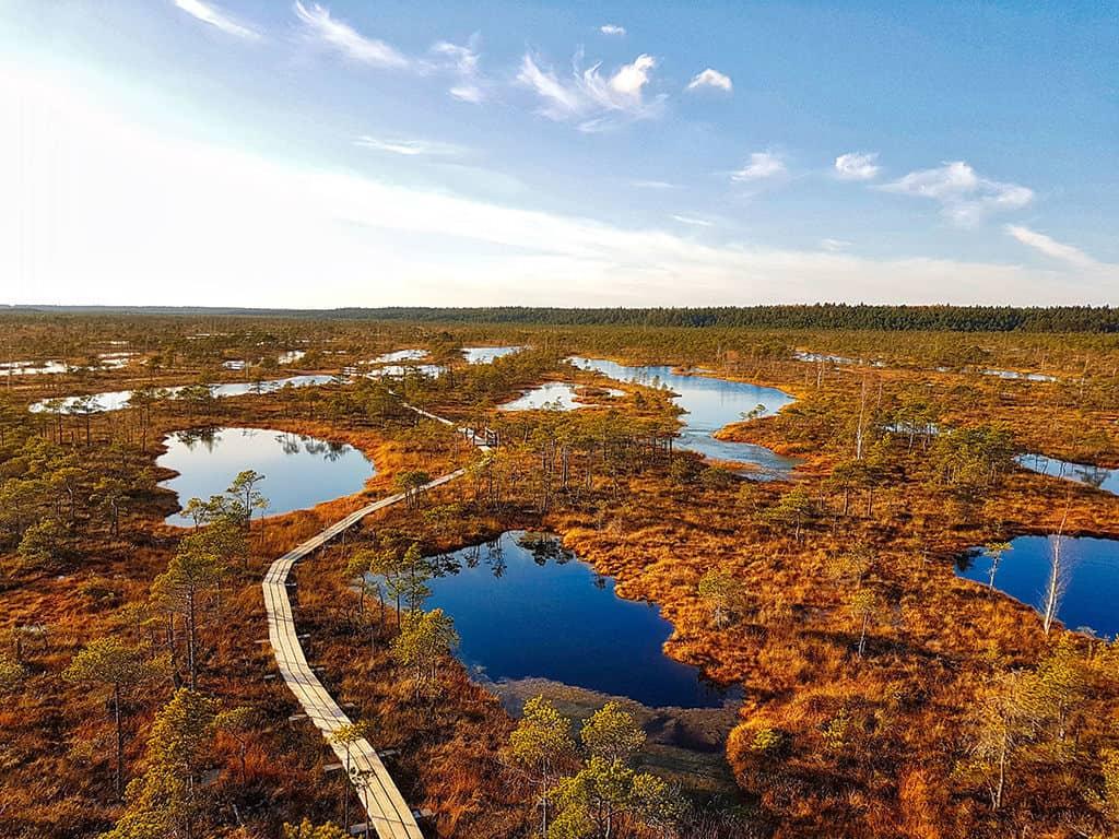 boardwalk in the great kemeri bog