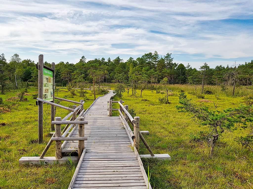 nature reserve in slitere national park