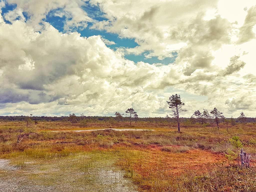ziemelvidzeme biosphere reserve in latvia