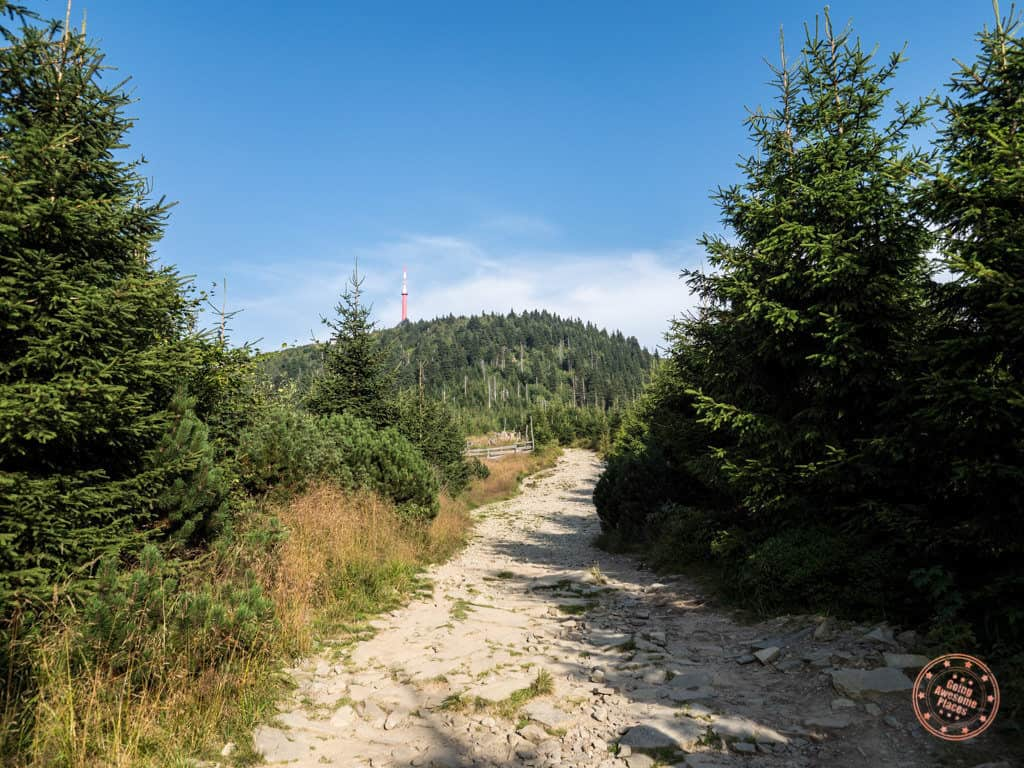 hiking up to lysa hora in the beskydy mountains