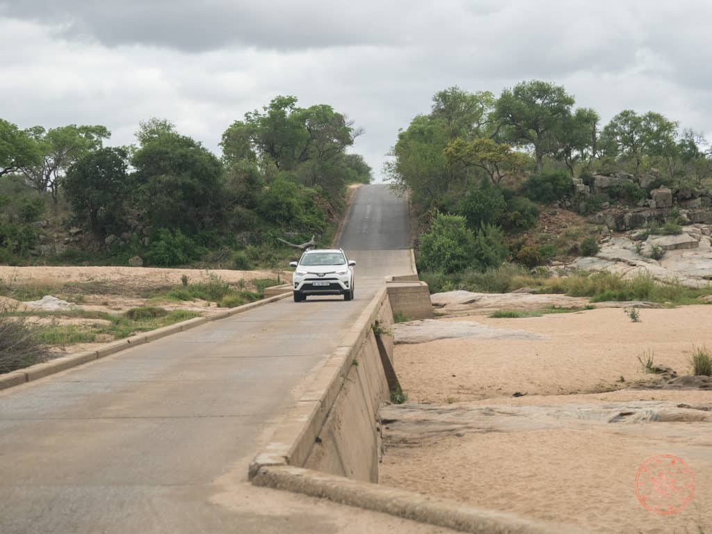 crossing bridge in guide for kruger national park for first timers