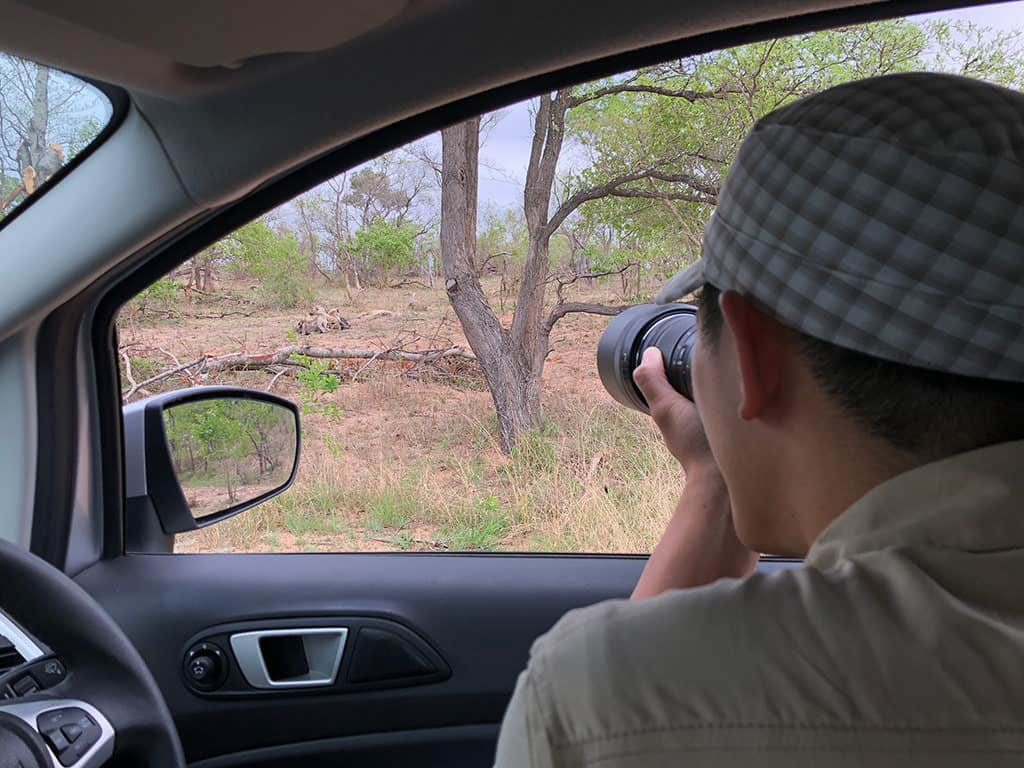 how to plan a safari to south africa - taking zoom photo of wildlife while self drive in kruger national park