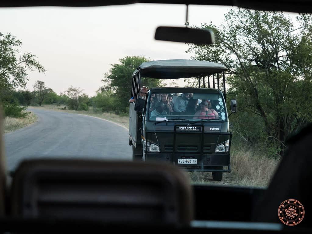 safari trucks converge on cheetah sighting during sunset drive