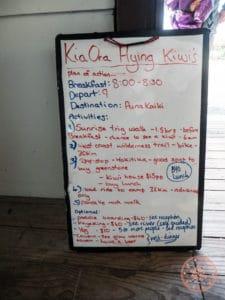 kia ora flying kiwi daily schedule board