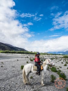 horseback riding at rees river with dart stables