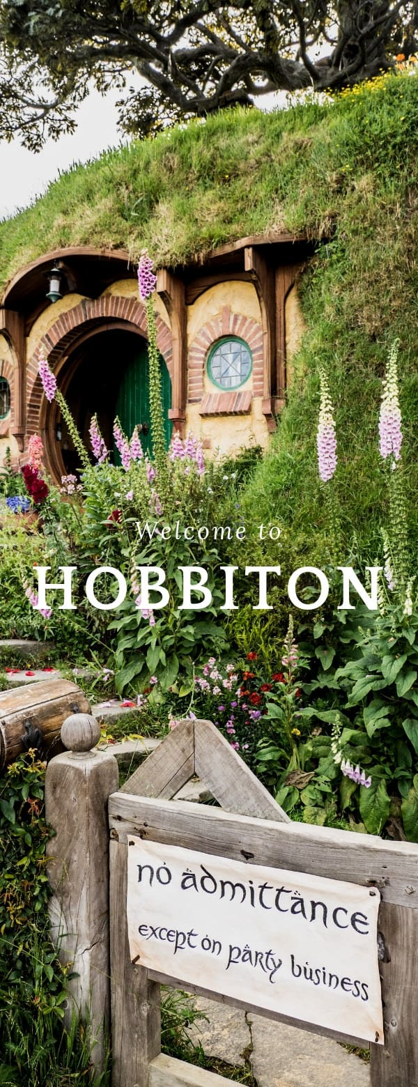 How to Visit the Hobbiton Movie Location in New Zealand