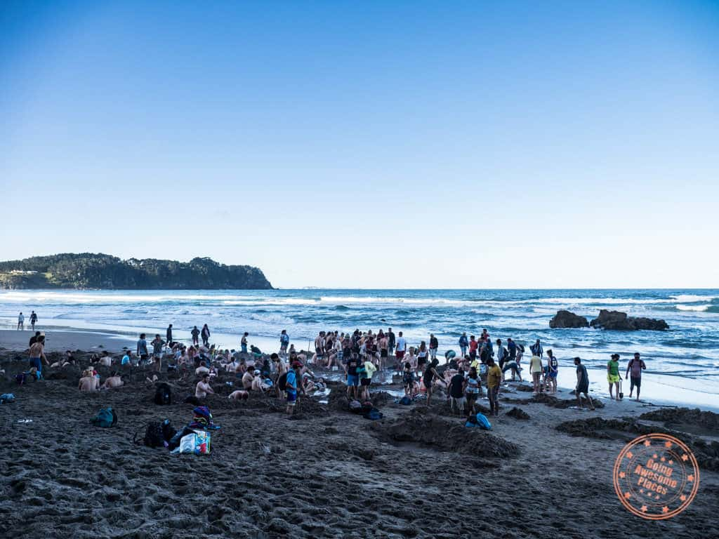 crowds at hot water beach in coromandel new zealand trip