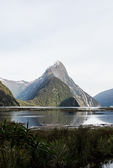 top 5 experience in new zealand milford sound and mitre peak