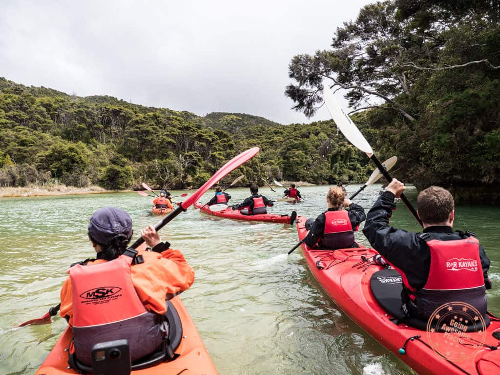 top activity in the abel tasman south island new zealand with msk ocean and earth