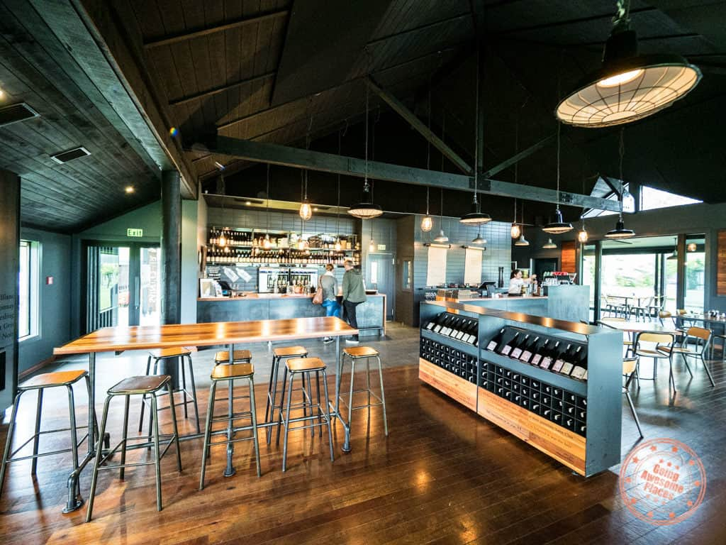 saint clair winery in marlborough top activity to do in south island nz