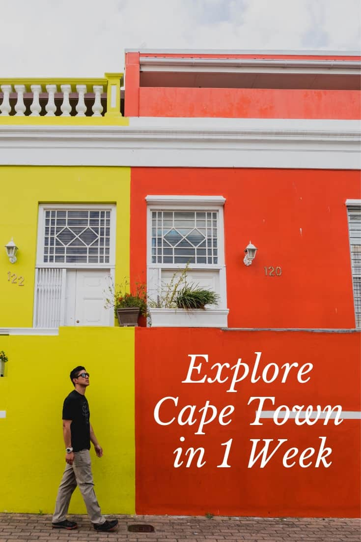 1 Week in Cape Town Itinerary - Wine, Sharks, Lions, Tables, Townships, and more!