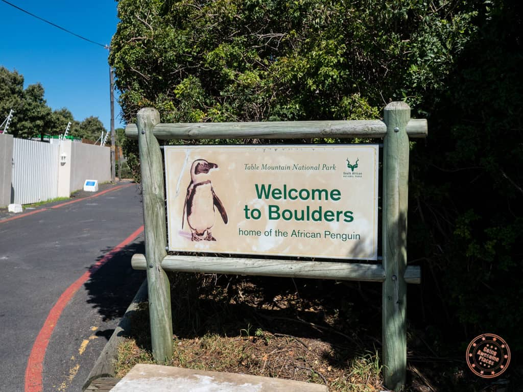 boulders beach sign 7 days in cape town