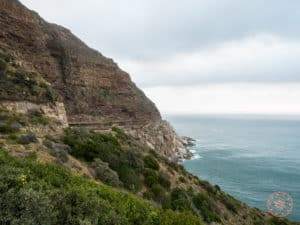 chapmans peak drive marine coastline road in cape town itinerary