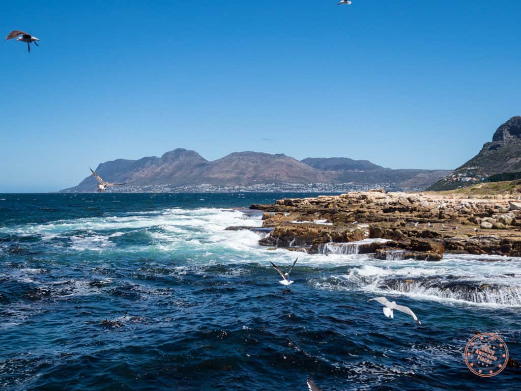 gorgeous views of peninsula route coastline from kalk bay