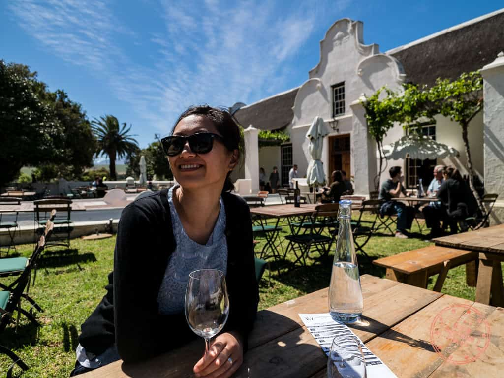 wine tasting at vergenoegd stellenbosch 1 week cape town itinerary