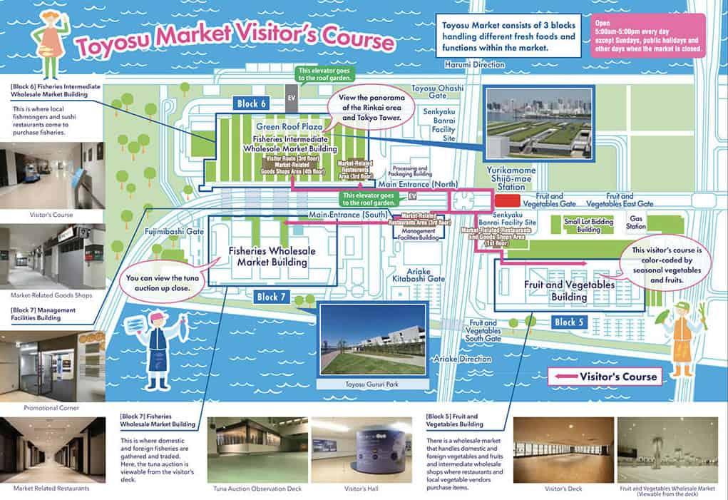 official toyosu fish market english map tokyo