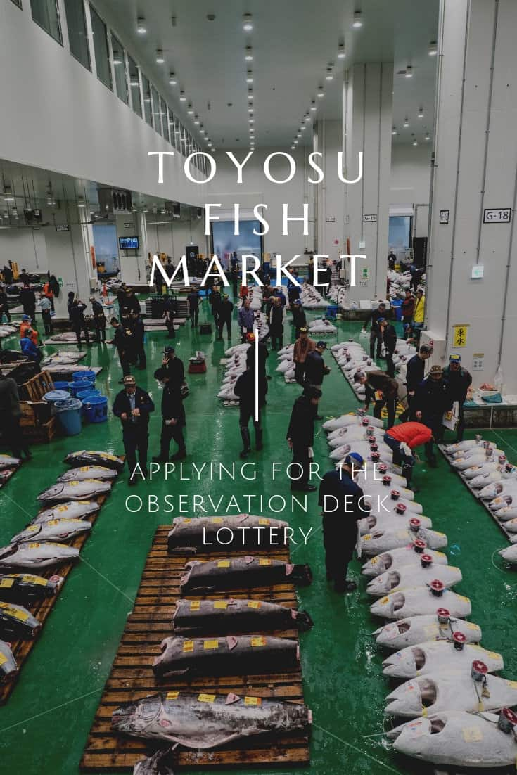 Now that Tsukiji has officially moved to Toyosu Fish Market, you\'ll need to know how the tuna auction works. This guide breaks down the options to watch the tuna auction in the morning and how you can apply to see it from the second floor observation deck. #toyosu #tokyotokyo #tokyo #tunaauction