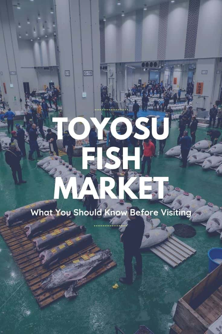Tsukiji Fish Market has officially moved to the brand new Toyosu Fish Market, you\'ll find everything you need to know to plan your trip around seeing the morning tuna auction, having incredible sushi, and visiting the new wholesale and shopping buildings in this expansive multi-building complex #toyosu #toyosufishmarket #tokyo #japan