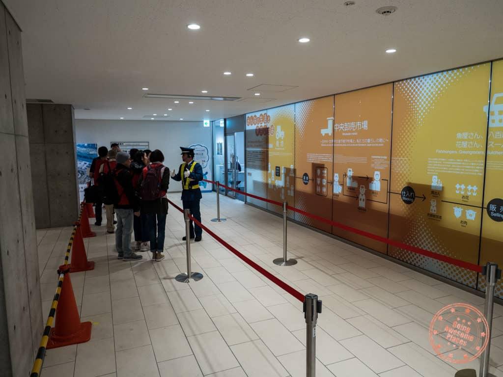 where to line up for toyosu market tuna auction observation deck pr center