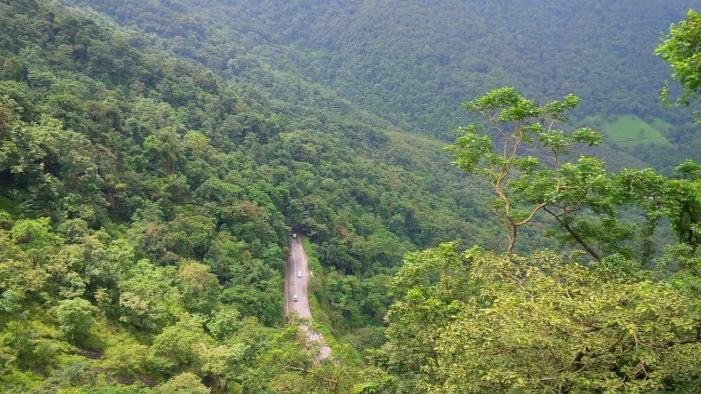 wayanad green kerala landscape