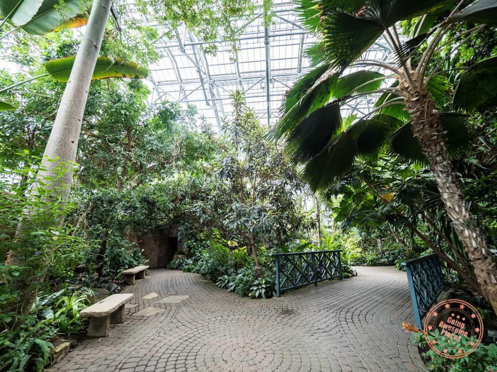 lena meijer tropical conservatory grand rapids garden