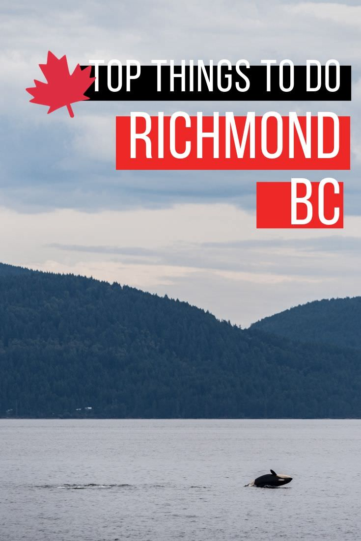 I bet you didn\'t know that you could do ALL of these things in Richmond, BC. From incredible Asian cuisine, whale watching, coastal heritage, Olympic history, night markets, and so much more. This is a full 4 day itinerary itinerary with where to stay, what to eat, and where to stay. #richmondmoments #hellobc #explorebc #richmondbc