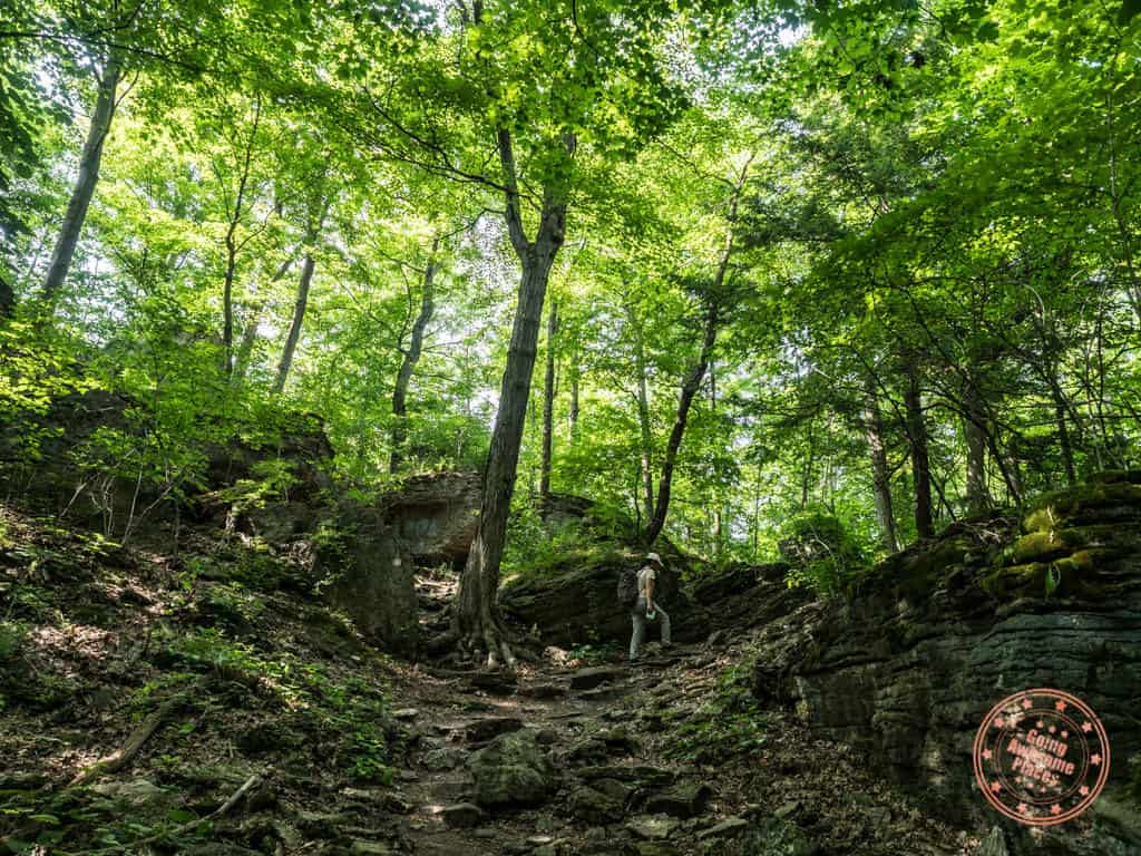 niagara glen nature centre hiking trails