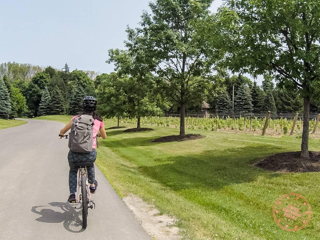 niagara on the lake winery self bike tour