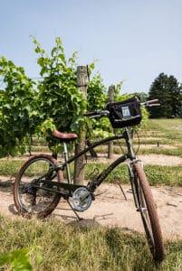 zoom leisure bikes niagara itinerary highlight