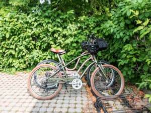 zoom leisure bike rental pick up