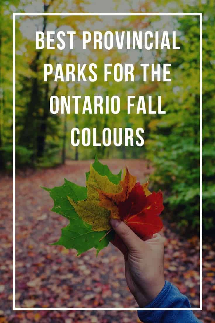 Best Provincial Parks to See the Ontario Fall Colours