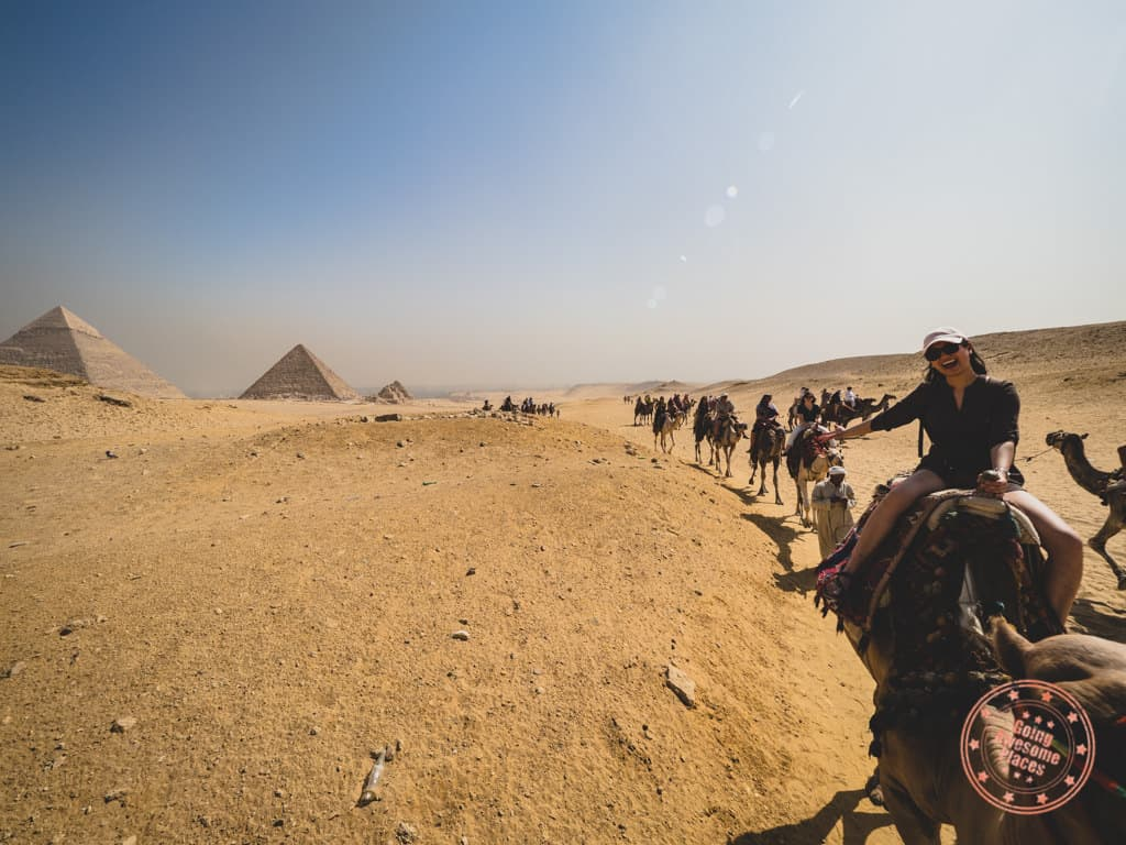 camel riding at giza great pyramids beware scammers