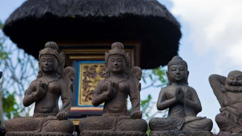 top things to do in ubud bali featured