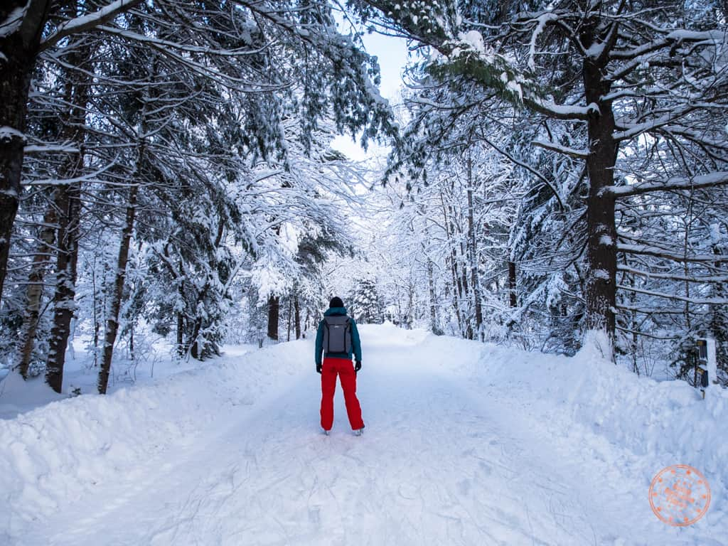 arrowhead provincial park ice trail